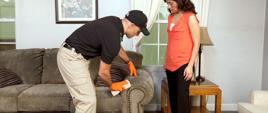 Fenton, MO carpet upholstery cleaning