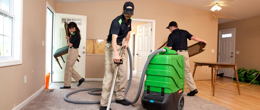 Fenton, MO cleaning services